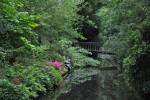 brugKortekaasKiemendebrugBredesloot22-6-201112-32-40.JPG